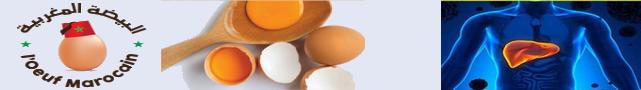 Œuf  Marocain : البيضة المغربية